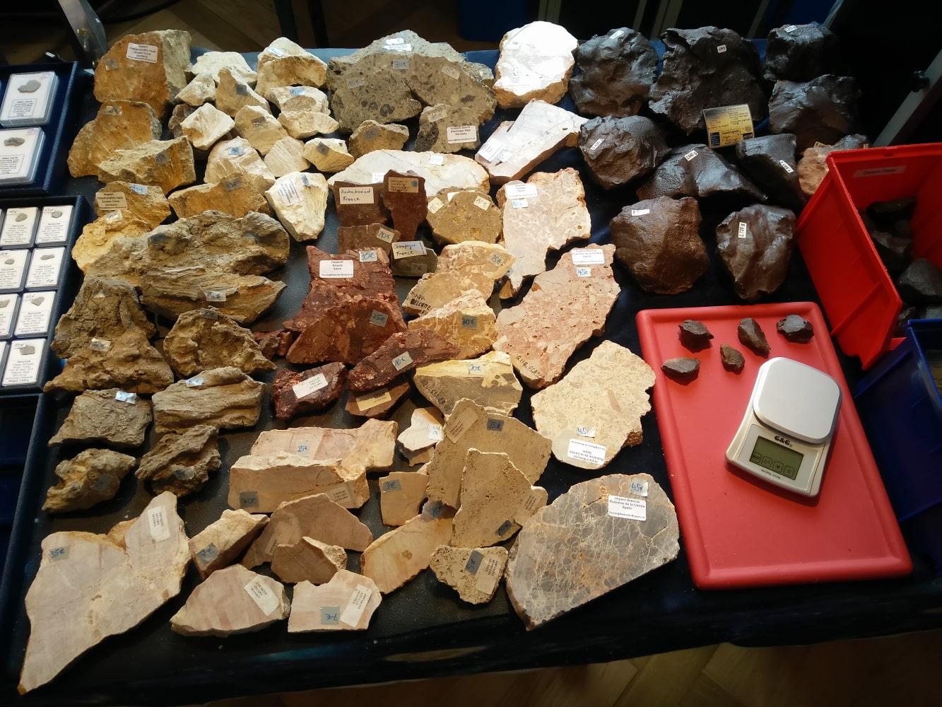 Impaktbrekzien in Scheiben aus Deutschland, Skandinavien, Spanien und Frankreich sowie der Eisenmeteorit Gebel Kamil aus Ägypten