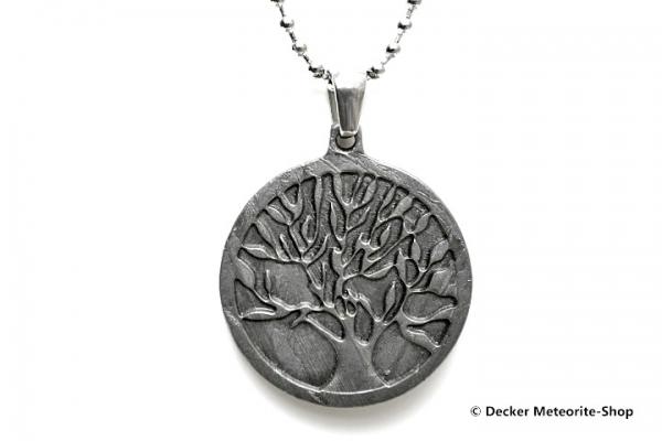 Eisen-Meteorit-Anhänger (Muonionalusta   Scheibe   Lebensbaum Carved Amulett) - 5,30 g