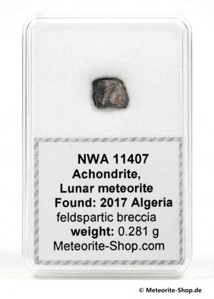 NWA 11407 Mond Meteorit - 0,281 g
