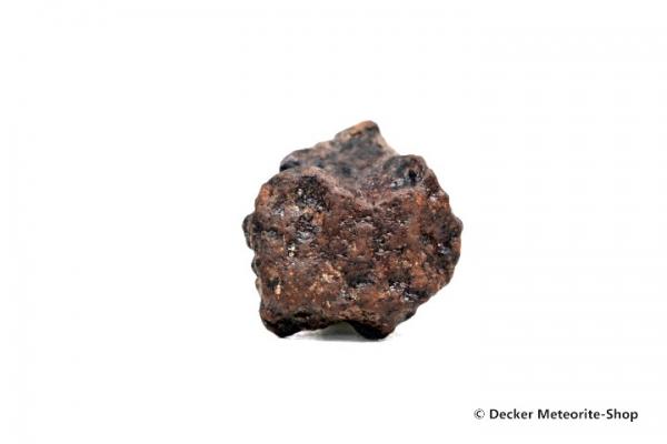 NWA Marrakesch Meteorit - 33,60 g