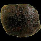 Steinmeteoriten vom Typ Eukrit