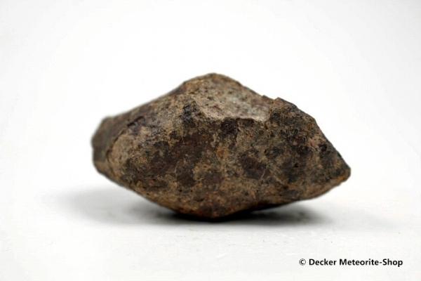 NWA Agadir Meteorit - 50,45 g