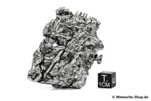 Campo del Cielo Meteorit - 242,90 g
